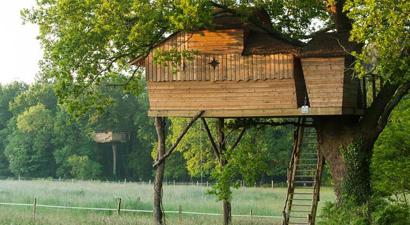 Cabane dans les bois vaud