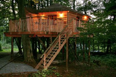 Cabane dans les bois ardennes