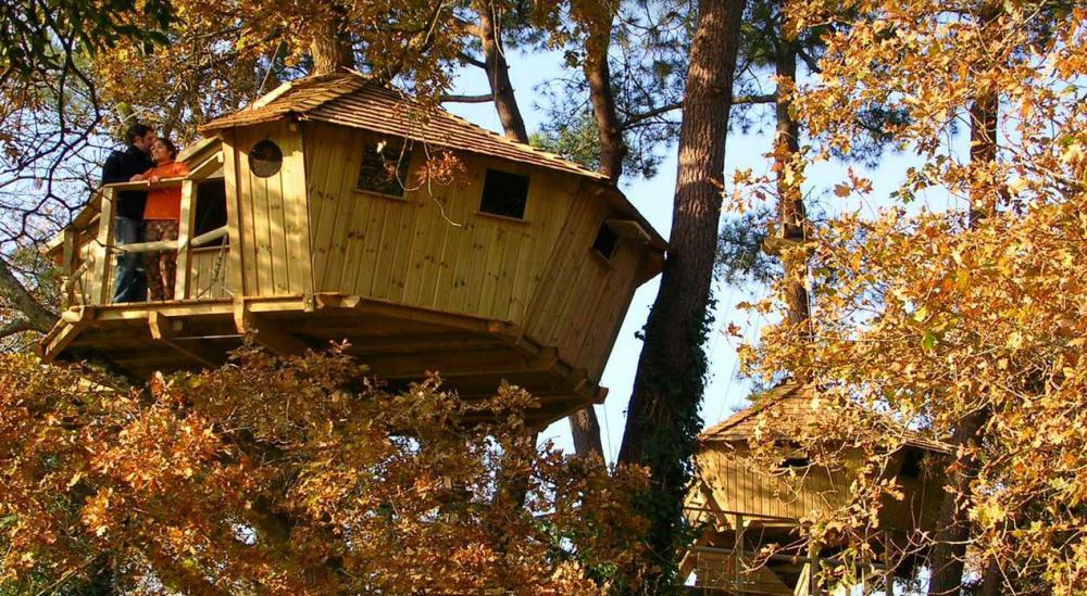 Cabane arbre dihan