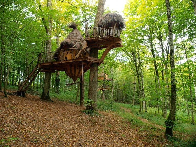 Cabane arbre vesoul