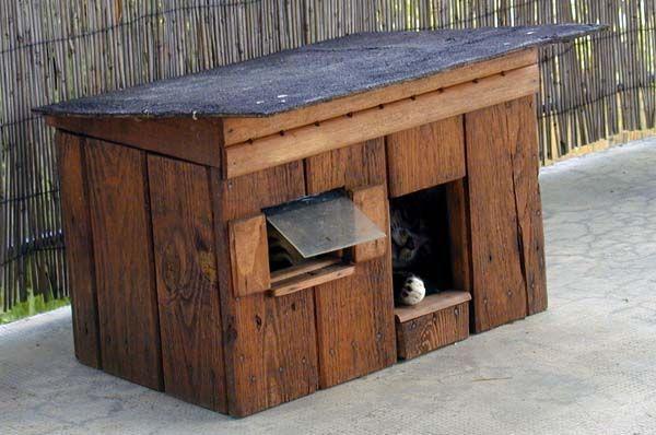 Cabane à chat pour l'hiver