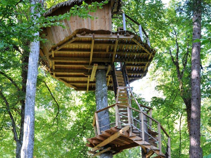 Cabane arbre plan