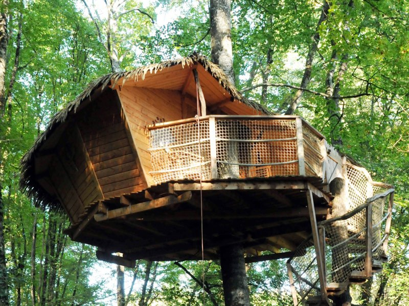 Cabane dans les arbres paca