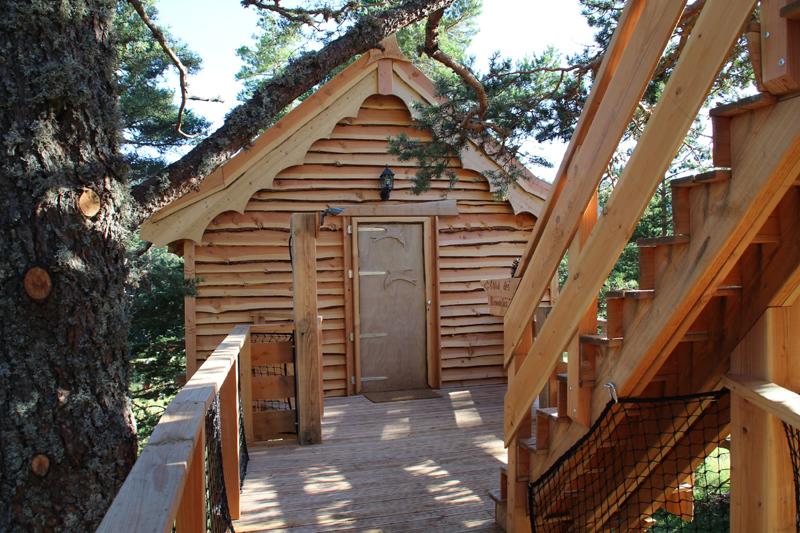 Cabane dans les bois alpes maritimes