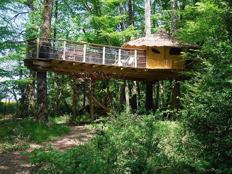 Cabane dans les arbres vaucluse
