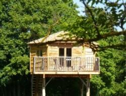 Location cabane dans les arbres yonne