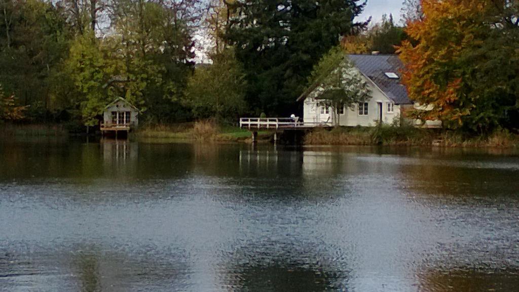 Cabane sur l'eau couvin