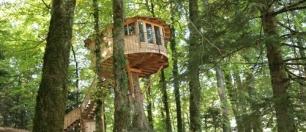 Cabane dans les arbres doubs
