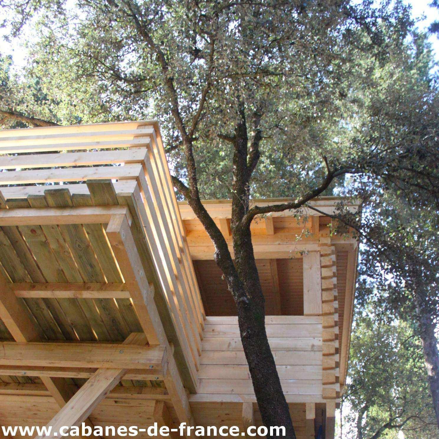 Cabane arbre villalier