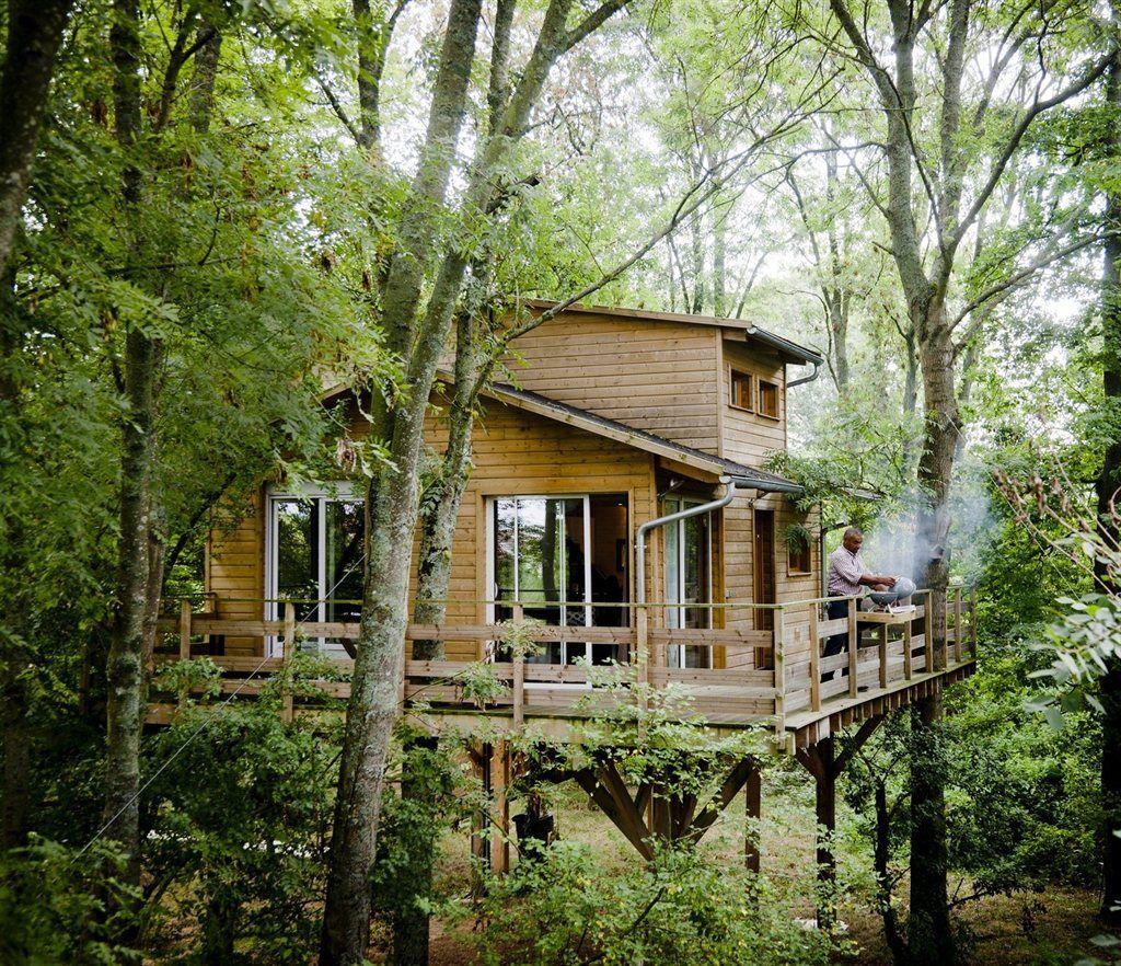 Cabane dans les arbres en seine et marne