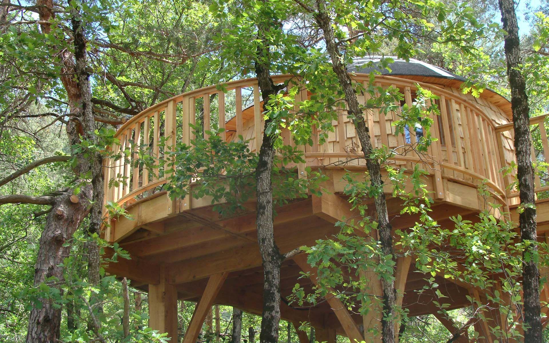 Cabane dans les bois tarn