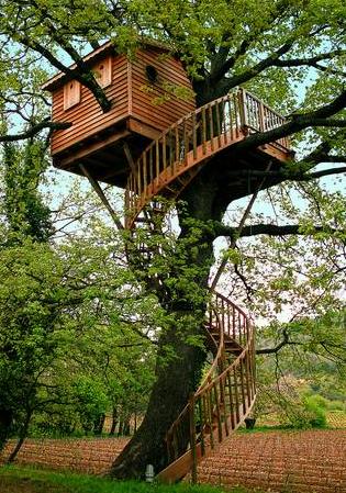 Cabane arbre manche