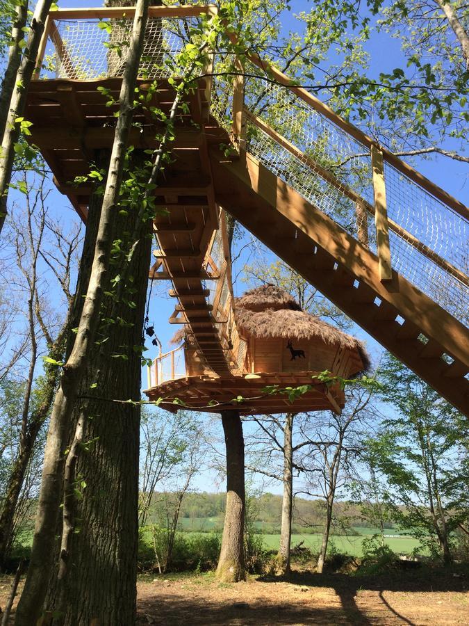 Cabane dans les arbres foret d'orient