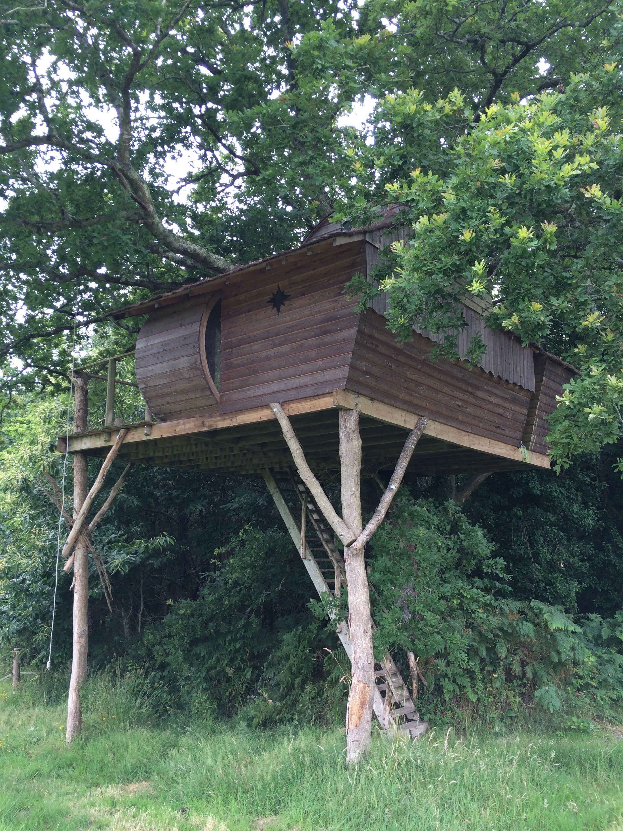 Cabane dans les arbres dihan