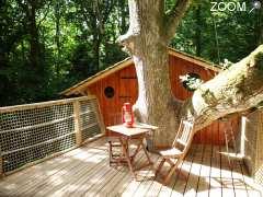 Cabane dans les arbres kermenguy