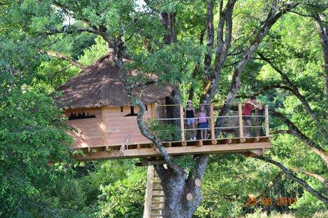 Cabane dans les bois sarthe