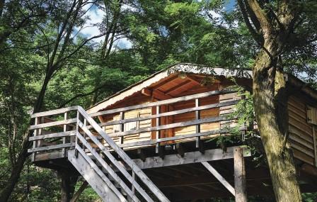 Cabane dans les bois wonderbox