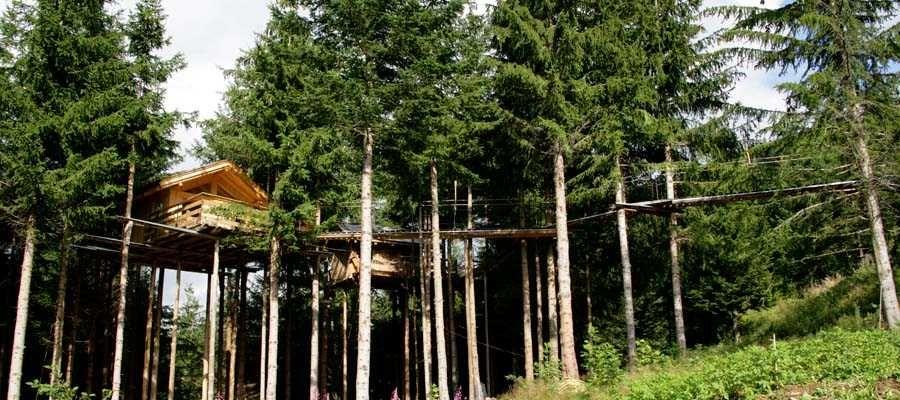 Cabane dans les bois haute savoie