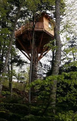 Cabane perchée dans les arbres jura