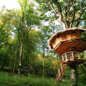 Cabane dans les bois haute marne