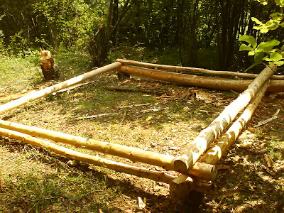 Cabane en bois rondins