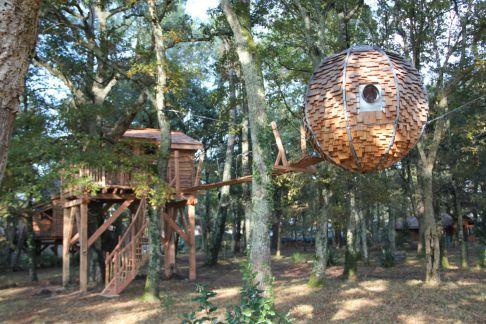 Cabane arbre aquitaine