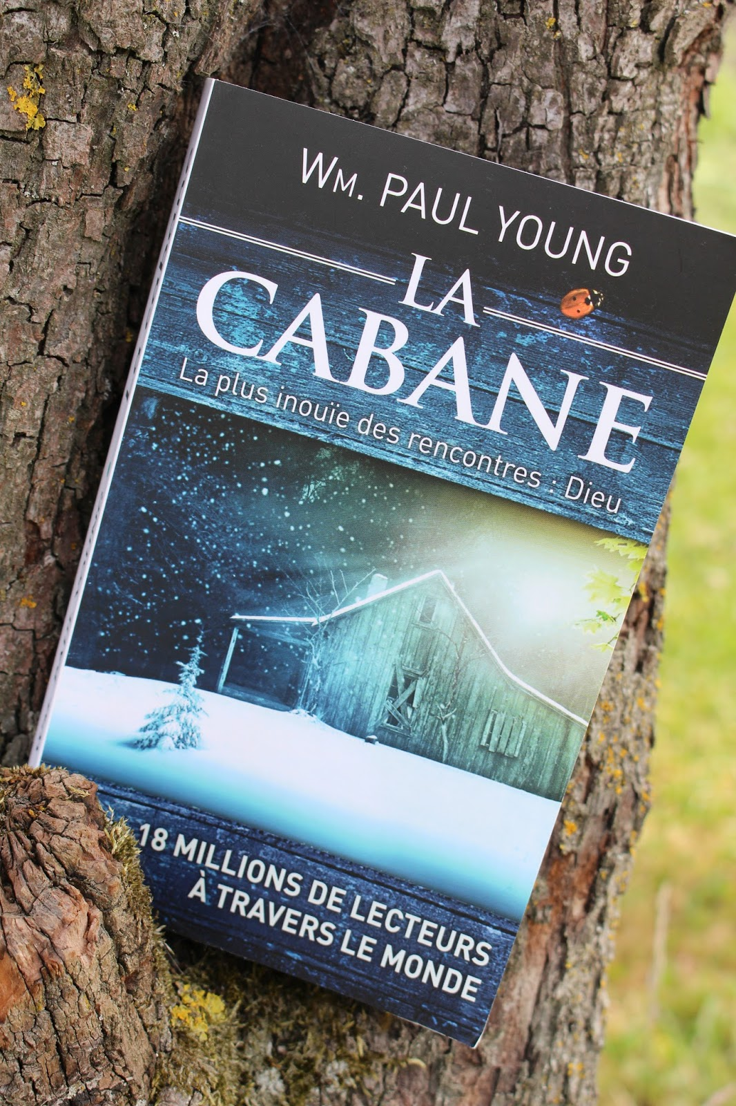 Cabane young