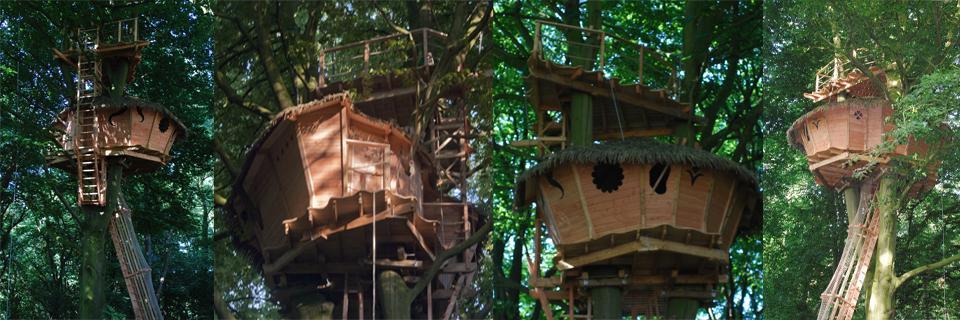 Cabane dans les arbres belgique