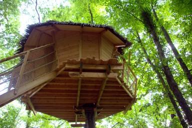 Cabane perchée montpellier