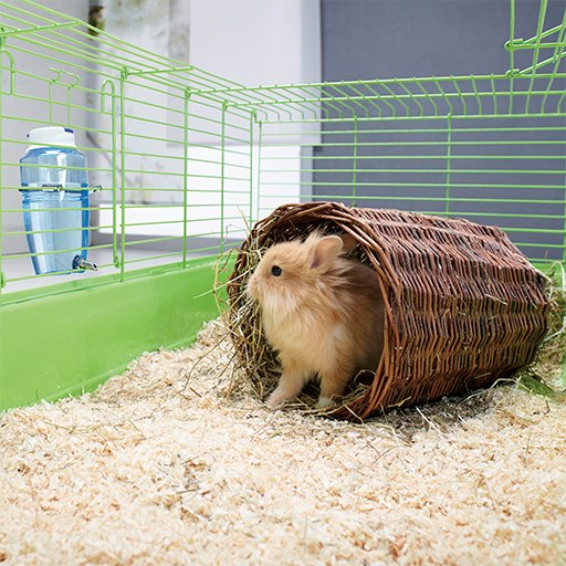 Cage a lapin maxi zoo