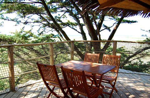 Cabane dans les arbres yelloh village