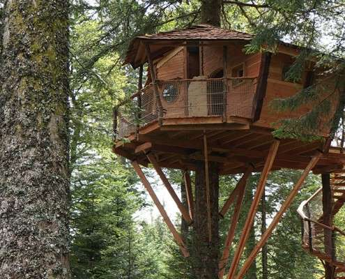 Cabane dans les arbres auvergne