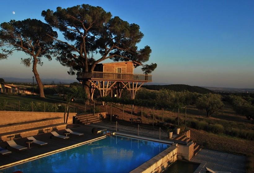 Cabane dans les arbres avec piscine