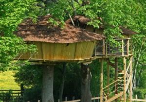 Cabane dans les arbres ferme