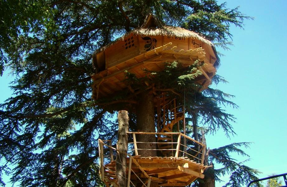 Cabane en arbre