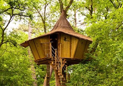 cabane dans les arbres constructeur jardin. Black Bedroom Furniture Sets. Home Design Ideas