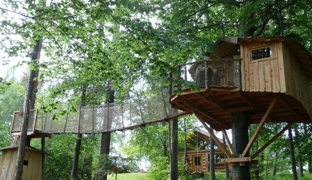 Cabane dans les bois alsace