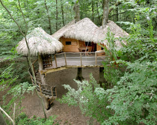 Louer une cabane dans les bois