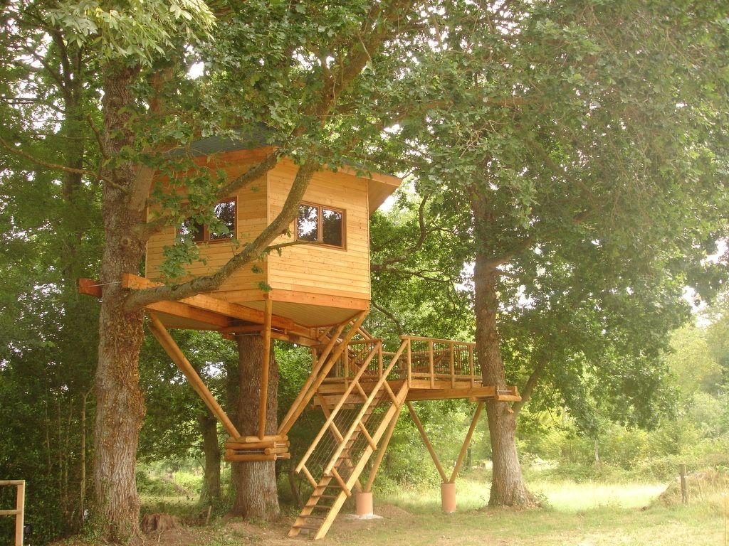 Cabane sur un arbre