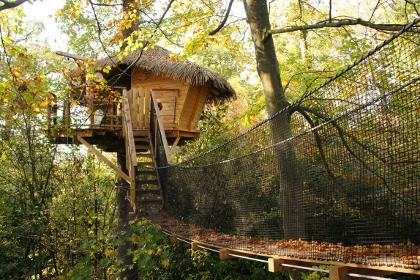 Cabane dans arbre