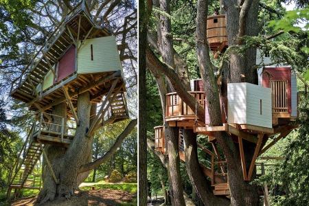 Cabane dans les arbres chateau de la loire
