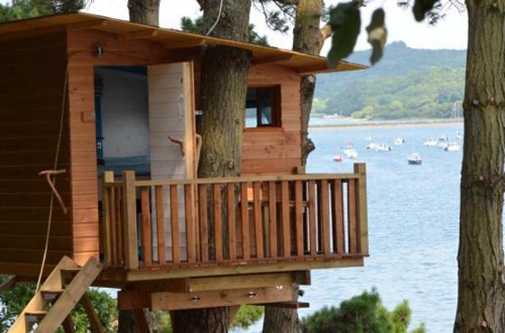 Cabane dans les arbres bord de mer