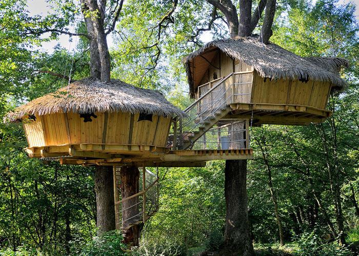 Cabane dans les arbres youtube
