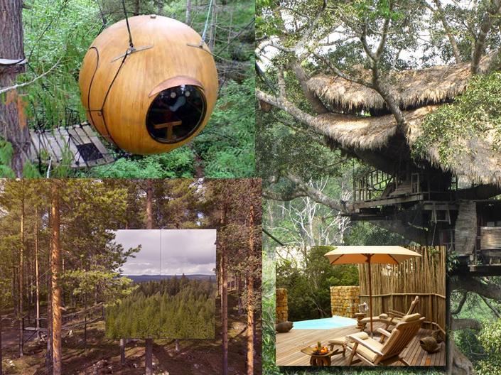 Cabane dans les arbres annecy