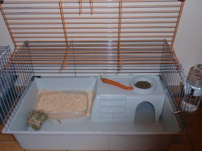 Cage a lapin nain interieur