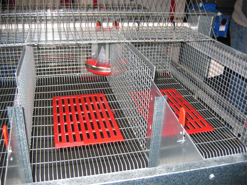 Cage a lapin flat deck