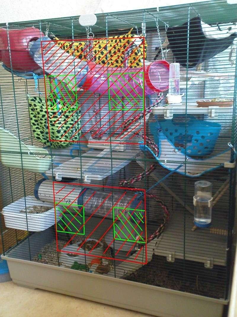 Cage a lapin pour rat