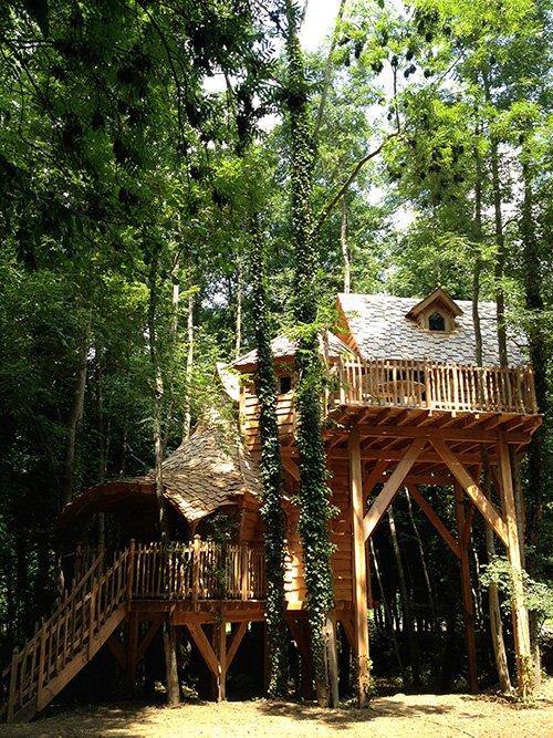 Cabane dans les arbres 77