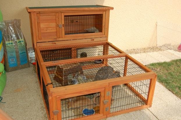 Cage a lapin exterieur jardiland
