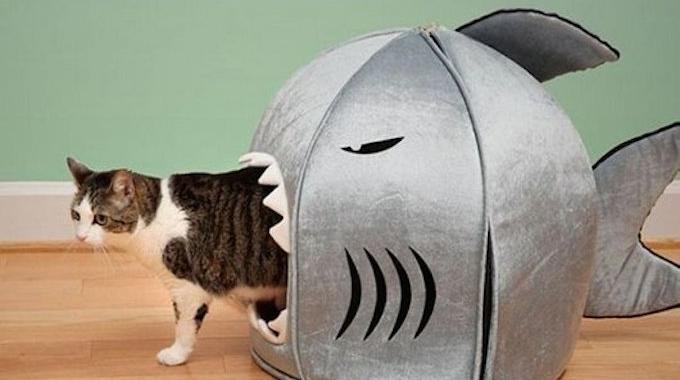 Cabane pour chat facile a faire